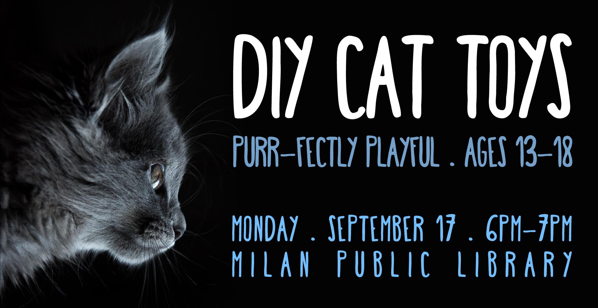 2018-09-TEEN-Milan-Cat-Toys-Slide