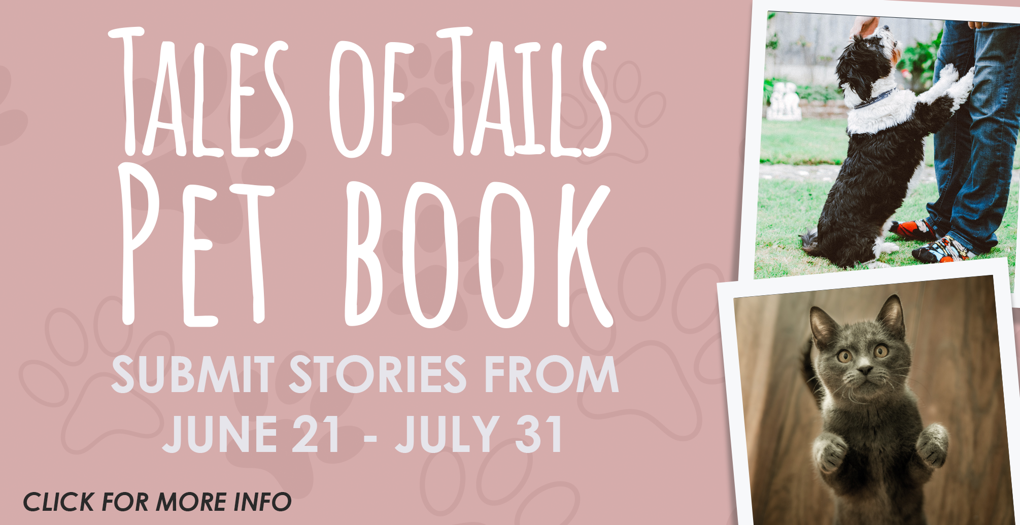 2021-06-CHILDRENS-Library-Tales-of-Tails-Pet-Book-Slide